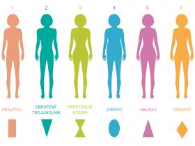 Typy postáv u žien