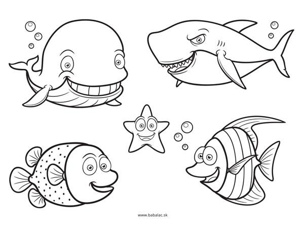 Omaľovánky pre deti zvieratá v mori