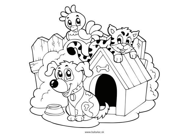 Omaľovánky pre deti zvieratá na dvore
