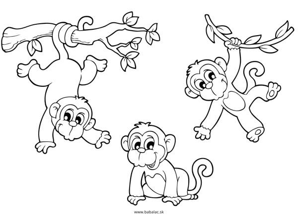 Omaľovánky pre deti opice