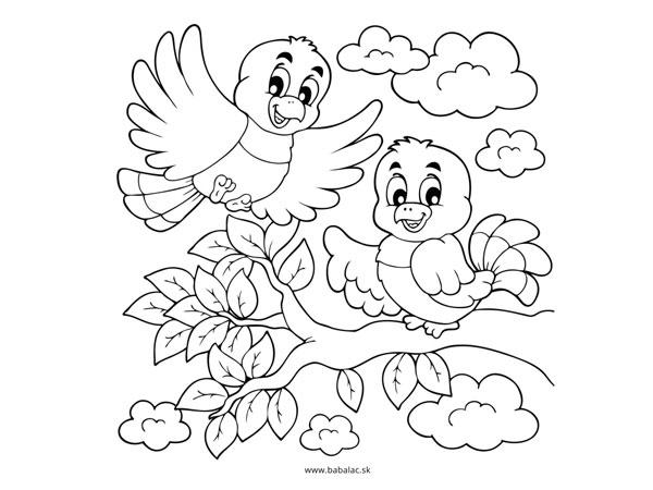 Omaľovánky pre deti vtáci