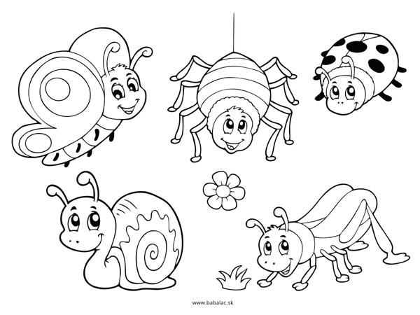 Omaľovánky pre deti zvieratá hmyz